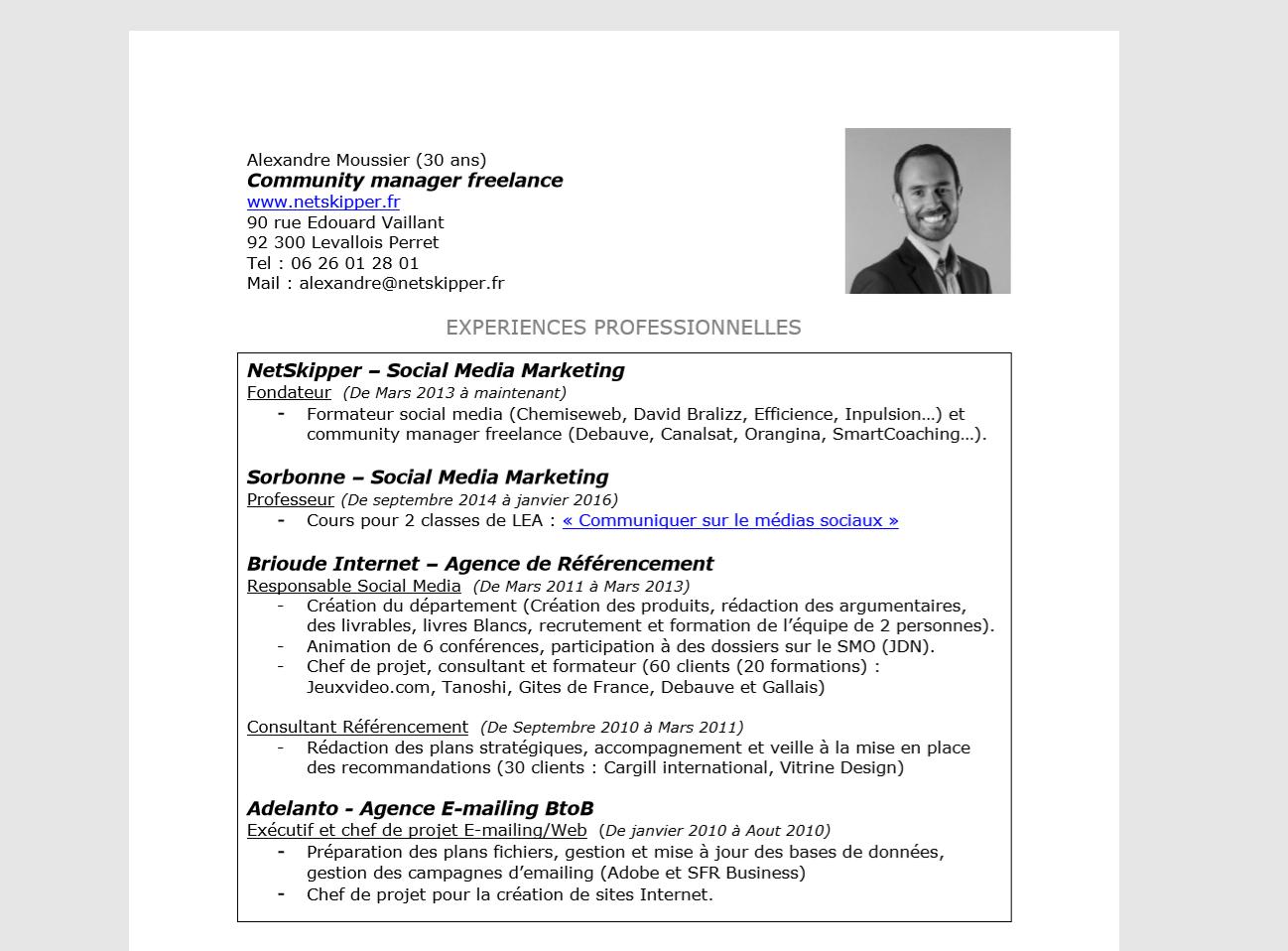cv original  u2013 community manager freelance  u2013 netskipper